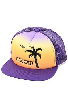 The Escape Snapback in Purple by Fly Society