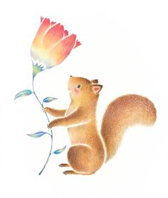 """""""Squirrel's Tete and a Flower"""" −RiLi, picture book, illustration, design ___ """"リスのテテとお花"""" −リリ, 絵本, イラスト, デザイン ...... #illustration #squirrel #flower #イラスト #りす #花"""