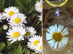 Százszorszép Washer Necklace, Plants, Pink, Jewelry, Love, Jewlery, Jewerly, Schmuck, Jewels