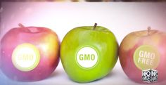 HUGE VICTORY: USDA INTRODUCES OFFICIAL NON-GMO LABEL Government to launch first non-GMO label