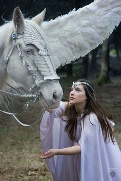 Winged horse`s