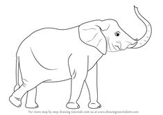 Image result for elephant side view drawing