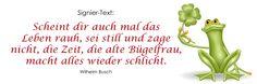 "Signiertext (56). Veganes Kochbuch ""ab und zu vegan-4-you"" (www.vegan-4-you.com)"