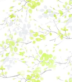 13plant57(50.8x63.5) - beding, sesaliving 블리스 (BLISS)