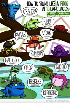 How To Sound Like A Frog In 10 Languages...