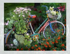 }{     flower bike