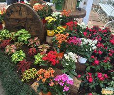 Rodas de carreta podem ser usadas para dar um charme rústico aos jardins, como neste caso.