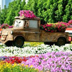 Así es el Dubai Miracle Garden, el jardín de flores más grande del mundo (FOTOS)