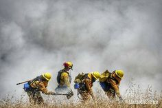 FEATURED POST   @alamedacofire -  Wildland training at Camp Parks in Dublin. (May 26 2016) #ALCOFire . CHECK OUT! http://ift.tt/2aftxS9 . Facebook- chiefmiller1 Snapchat- chief_miller Periscope -chief_miller Tumbr- chief-miller Twitter - chief_miller YouTube- chief miller  Use #chiefmiller in your post! .  #firetruck #firedepartment #fireman #firefighters #ems #kcco  #flashover #firefighting #paramedic #firehouse #wod #firedept  #feuerwehr #crossfit  #brandweer #pompier #medic #motivation…