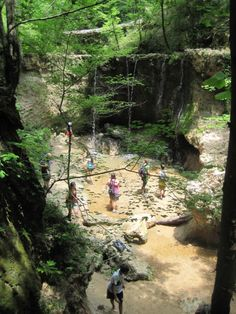 Waterfall Clark Creek #hike with #packandpaddle in Woodville, Mississippi #packpaddle #waterfall