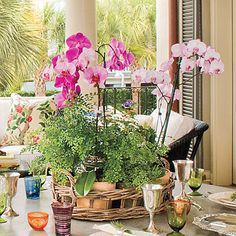 Connect to the Garden    Surround yourself with lots of potted plants and flowers, such as ferns, palms, and orchids.
