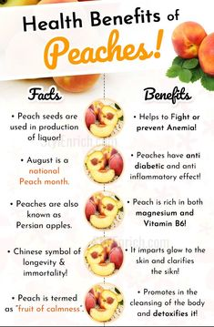 health facts Benefits And A Know-How On Some Peachy Facts! Health Benefits Of Peaches And Some Peachy Facts!Health Benefits Of Peaches And Some Peachy Facts! Matcha Benefits, Lemon Benefits, Coconut Health Benefits, Fruit Benefits, Health Benefits Of Fruits, Health Blog, Health Facts, Health Tips, Healthy Snack Foods