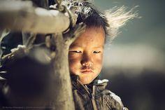 """Wind-hardened"" by Anton Jankovoy"