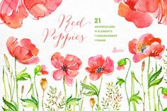 Red Poppies. Floral collection by OctopusArtis on Creative Market