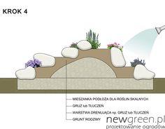 Jak założyć skalniak | NewGreen projektowanie ogrodów | architektura krajobrazu