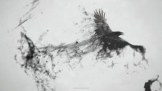 abstract bird art dark - Google Search