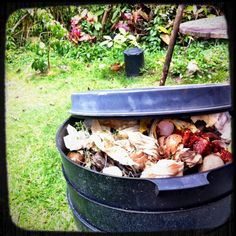 It's time to waste less, enjoy more. Learn about how food gets wasted, take a food waste quiz and get tools to reduce food waste. Composting At Home, Food Waste, Love Affair, Worms, A Food, Garden, Outdoor Decor, Lawn And Garden, Gardens