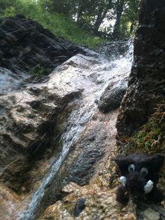 Hiking_wandern: Übleschlucht Rankweil / Laterns / Vorarlberg / Austria mit Häkelwildsau unterwegs ;-))  Foto@Tschola