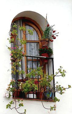 Spain-  window