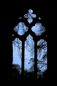 Image discovered by walloth. Find images and videos about window and gothic on We Heart It - the app to get lost in what you love. Dark Gothic, Gothic Art, Gothic Windows, Dark Photography, Window View, Through The Window, Gothic Architecture, Nocturne, Belle Photo