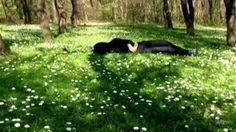Vídeos de Mariana Vassileva on Vimeo