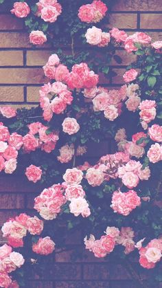 Flowers Outside My Window Scrapbooking