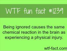 Wtf fun fact #1239