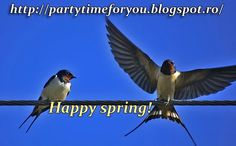 Party time: Happy spring!