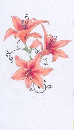 Tiger Lilies by Meevers-Desu.deviantart.com on @deviantART