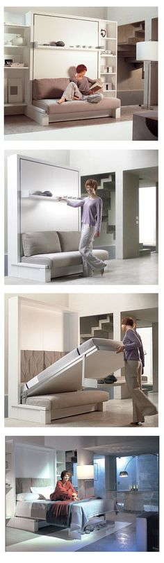 Murphy Bed. I like the sofa part; haven't seen that before. I like the idea for an office/guest bedroom.