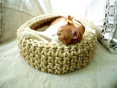 rope cat basket crochet