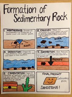 Formation of Sedimentary Rock Science Resources, Science Lessons, Science For Kids, Earth Science, Science Ideas, Sedimentary Rock Formation, History Of Earth, Science Anchor Charts, Rock Cycle