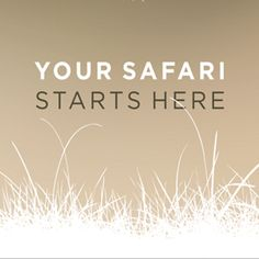 Want to book a Private safari in the Kruger National Park? Your Safari starts here. Private Safari, Kruger National Park Safari, African Safari, Book, Books, Livres, Libri, Libros, Blurb Book