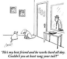 He's my best friend and he works hard all day.  Couldn't you at least wag your tail?