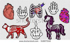 Fashion patch badges. Set of cat skeleton , realistic human heart, heart shot with an arrow in the chest, unicorn skeleton, skeleton gestures: middle finger and Rock n roll horns