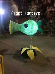 Tradition handmade plant lantern to celebrate China Mid Autumn Festival in my hometown ,like it very much