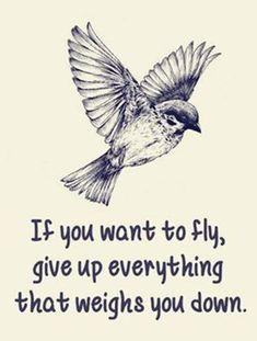 Exclusive IPac T-shirt! - If you want to fly, give up everything that weighs you down - Fight for your Second Amendment rights with our exclusive IPac T-shirt! Grab your FREE T-shirt below. Life Quotes Love, Great Quotes, Quotes To Live By, Me Quotes, Motivational Quotes, Inspirational Quotes, Bird Quotes, Quotes About Birds, Fever Quotes
