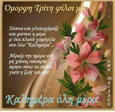 Good Morning, Tuesday, Napkins, Tableware, Decor, Plants, Buen Dia, Dinnerware, Decoration