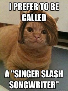Perhaps I will become a famous meme-maker. Hipster funny joke cat memes humor