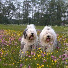 Rhea & Lisa
