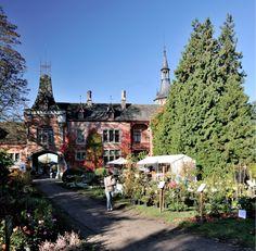 Wandel de herfst in op de Tuindagen in Beervelde Belgium, Nature, Dolores Park, Travel, Outdoor, Gardens, Horta Vertical, Plants, Fall