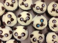 If the eyes could be a little less creepy, panda cupcakes will be quite the hit.