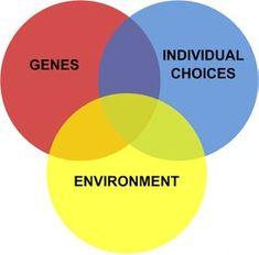 and Human Autonomy Nurture Nature Does your Family Make You Smarter?