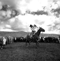 #Campo | Adam Jahiel The Dally, 1992