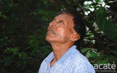 Barbara Paisagismo e Meio Ambiente: AMAZÔNIA