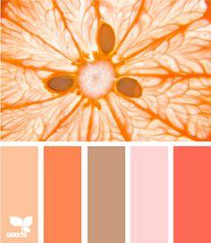 Best Ideas Bedroom Ideas For Couples Color Schemes Colour Design Seeds Scheme Color, Colour Pallette, Color Palate, Colour Schemes, Color Combos, Color Patterns, Design Seeds, World Of Color, Color Swatches