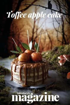 Our toffee apple cake is a real showstopper bake for a Halloween party. The toffee apples are soft, not crunchy, so they won't break your teeth Healthy Apple Cake, Vegan Apple Cake, Moist Apple Cake, Easy Apple Cake, Fresh Apple Cake, Apple Cake Recipes, Easy Cake Recipes, Baking Recipes, Drink Recipes