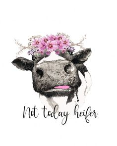 Don't make me flip my heifer switch pngCow Cow Png, Vinyl Projects, Cool Art, Funny Pictures, Artsy, Framed Prints, Drawings, Crafts, Painting