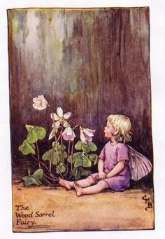 Wood Sorrel Flower Fairy Vintage Print by Cicely Mary Barker. first published in London by Blackie, 1923 in Flower Fairies of the Spring.
