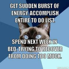 Get sudden burst of energy. Accomplish entire to do list. Spend next week in bed, trying to recover from doing too much!! :-( #smartcat - Know more about your cat at Catsincare.com!